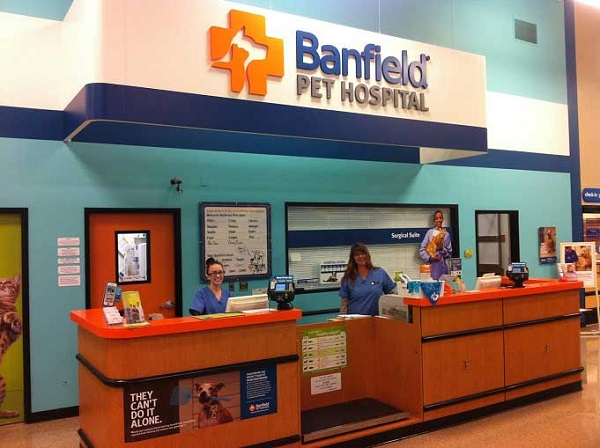 10-Banfield-Pet-Hospital-Office-Visit-Consultation