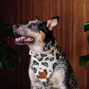 Nice-Digs_Animal-Dog-Bandana_Slate_SQUARE-02_1000x