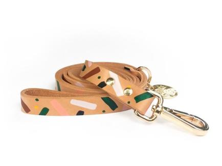 Nice-Digs_Master-Confetti-Leash_Front_600x