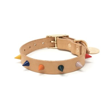 Nice-Digs_Spike-Dog-Dog-Collar_Jungle_Back_1200x