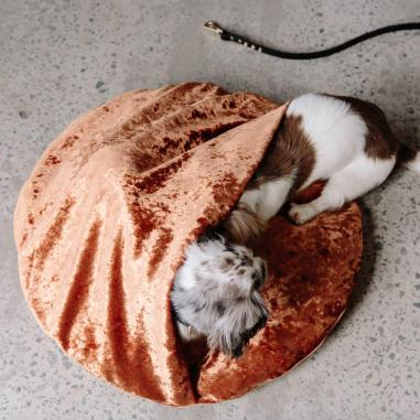 Nice-Digs_Velvet-Snuggle-Dog-Bed_Copper_Square-12_1000x