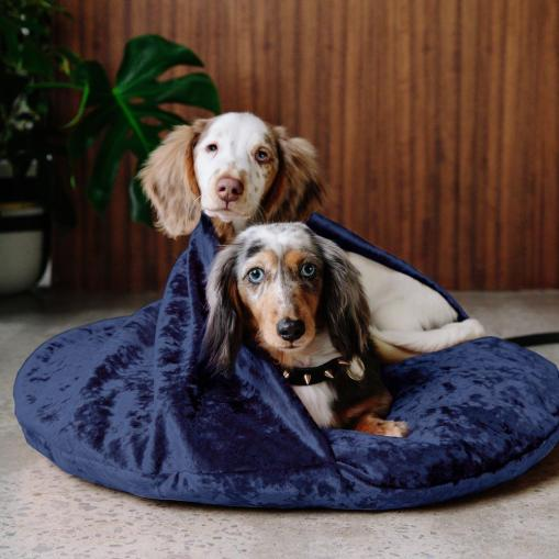 Nice-Digs_Velvet-Snuggle-Dog-Bed_Midnight_02_1000x