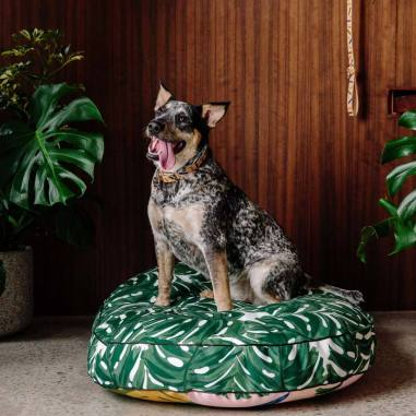 Nice-Digs_Wanderlust-Dog-Bed_Square-03_1000x