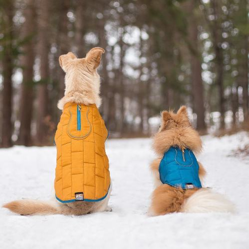 Quilted_Dog_Coat_Winter_Dog_Coat_Blue_Orange_Reverse__12121.1485545779.1280.1280.jpg