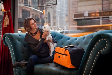 sleepypod_air_pet_carrier_airline_approved_01