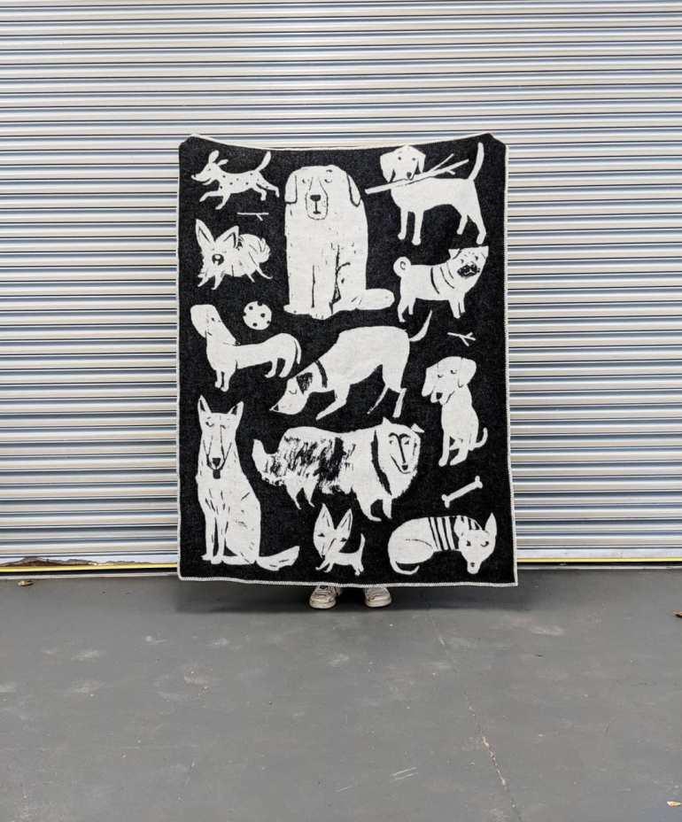 dog_park_blanket_four_legs_four_walls_01.jpg