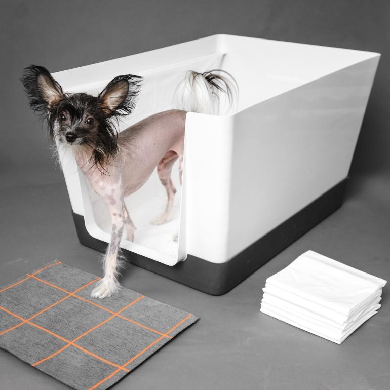 doggy_bathroom_indoor_potty_03.jpg
