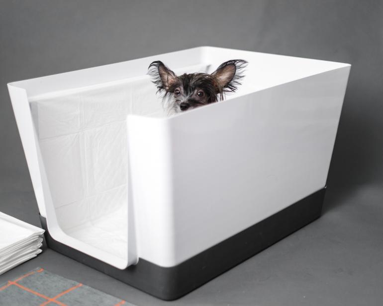 doggy_bathroom_indoor_potty_05.jpg