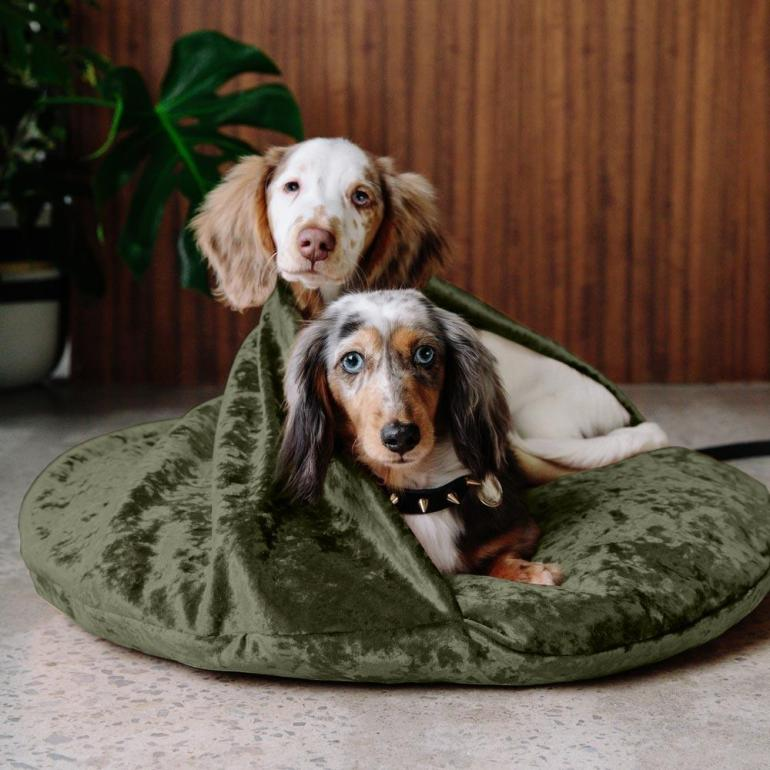 Nice-Digs_Velvet-Snuggle-Dog-Bed_Evergreen_02_1000x.jpg